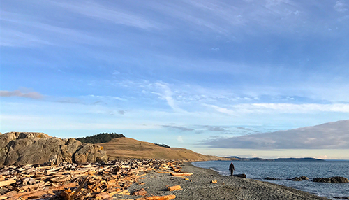 South Beach in American Camp National Historic Park is San Juan Island's longest beach