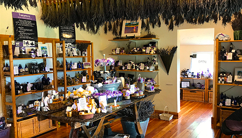Gatehouse Farm Store at the Lavender Farm