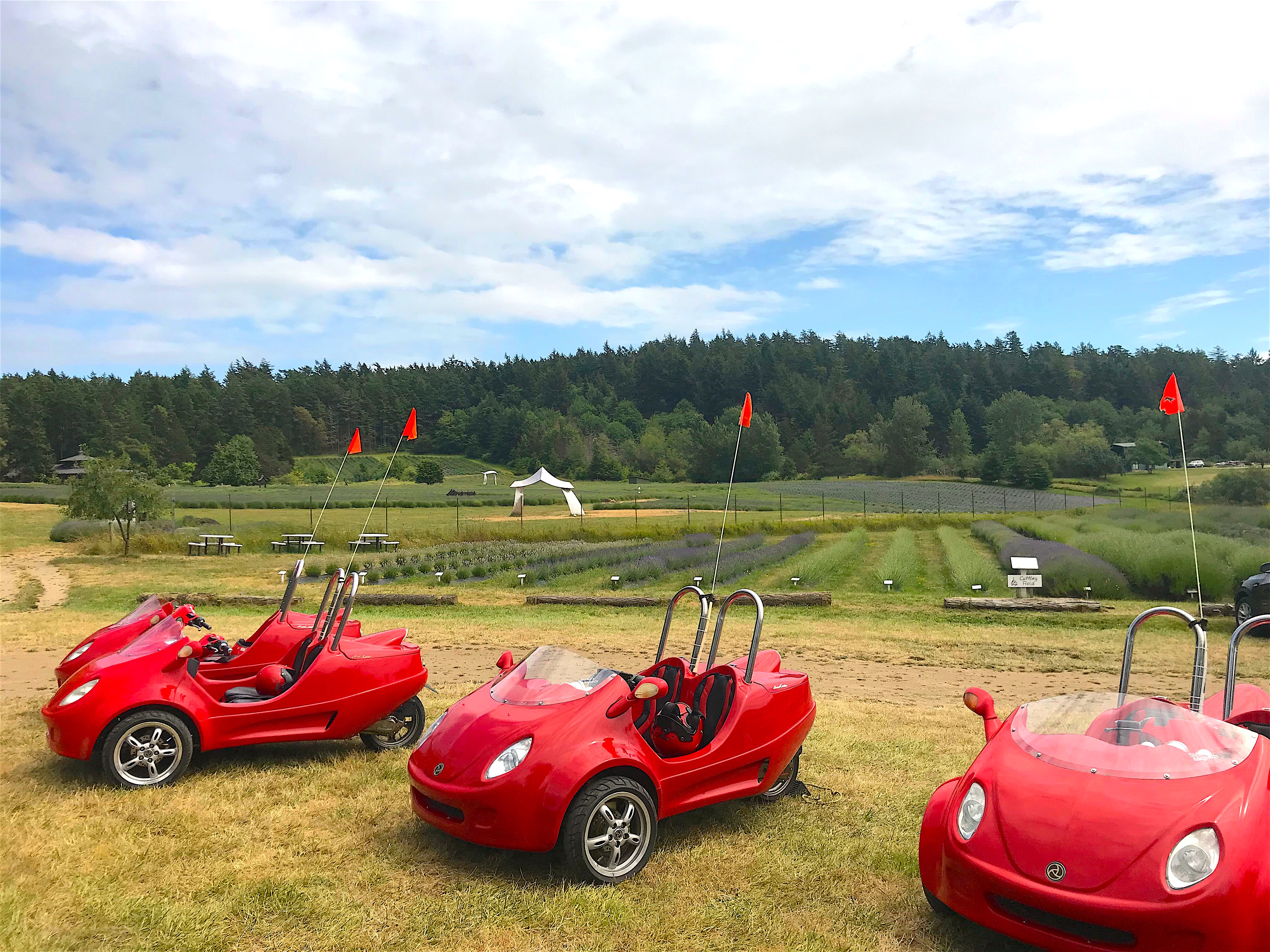 Scootcars on San Juan Island