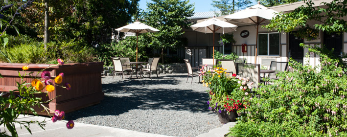 Earthbox Inn And Spa Promo